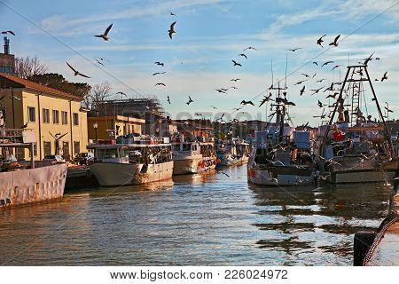 Cesenatico, Forli-cesena, Emilia Romagna, Italy: Picturesque View Of The Fishing Boats With Flock Of
