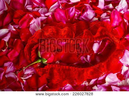 Sexy Lingerie On Red Rose Petals Background, Clothes For Striptease And Temptation, Sensual Woman Be