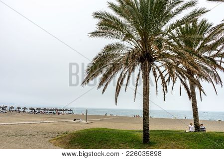 Tall Twin Palm Trees Along The Malaguera Beach With Ocean In The Background In Malaga, Spain, Europe