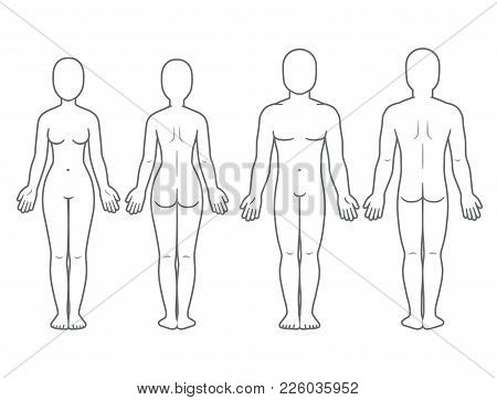 Male And Female Body Front Back View Blank Human Template For Medical Infographic
