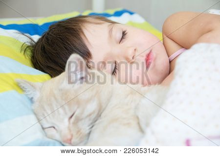 Little Girl Sleep With Cat, Favorite Pet Lying On Child Chest, Interactions Between Children And Cat