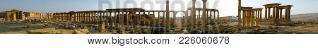Panorama Of Palmyra Columns, Tetrapylon And Ancient City, Destroyed Now, Syria