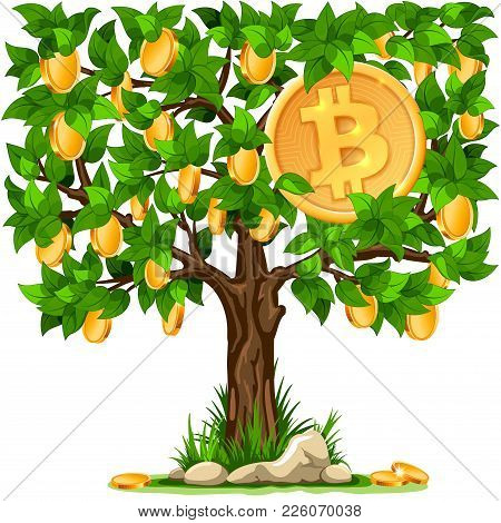 Golden Shiny Coin With Bitcoin Symbol Growing On The Money Tree. Digital Currency. Cryptocurrency. I