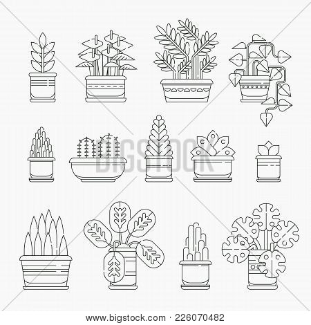 Set Of Houseplants Icons In Line Design, Editable Stroke. Various Plants Collection In Flowerpots Is