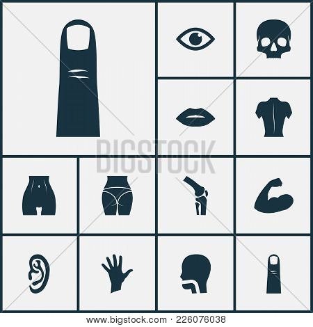 Physique Icons Set With Butt, Skull, Finger And Other View Elements. Isolated Vector Illustration Ph