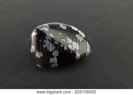 Beautiful Mineral Snowflake Obsidian Or Volcanic Glass On Gray Background