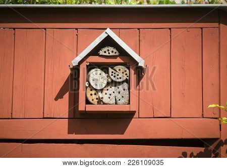 Insect House On The Wood Red Wall