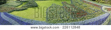 Panorama View Of A Flower Decoration At A Garden In Keukenhoff, Lisse, Netherlands, Europe