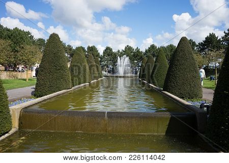 Cone Tree And A Water Pond With Fountain In A Garden In Lisse, Netherlands, Europe