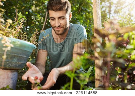 Rural Life. Close Up Of Young Attractive Bearded Hispanic Farmer In Blue T-shirt Working On His Farm