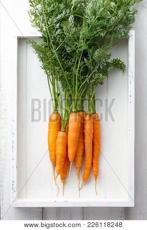 Fresh Carrots Bunch In White Wooden Tray, Top View