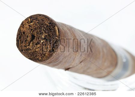 Expensive Hand-rolled Cigar