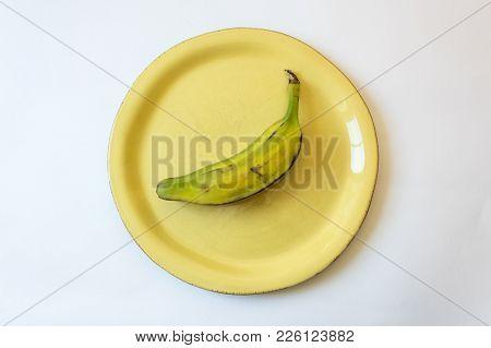Half Ripe Burro Banana On Bright Yellow Plate, Also Orinoco, Bluggoe, Horse, Hog Or Largo Banana, Is