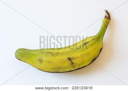 Side View Of Half Ripe Burro Banana, Also Orinoco, Bluggoe, Horse, Hog Or Largo Banana, Isolated On