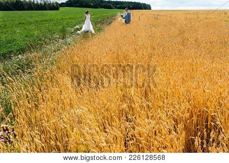 The Bride And Groom Stand In The Field, In Summer. A Man Stands In Wheat Ears, A Woman On A Green Me