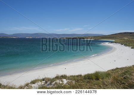 White Sands And Blue Waters Of Leopard Beach On Carcass Island In The Falkland Islands