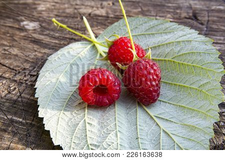 Fresh Raspberries On Raspberry Leaf