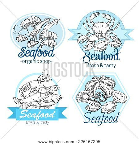 Vector Banner Or Label With Hand Drawn Seafood Design With Mussel, Fish Salmon, Shrimp. Lobster, Squ