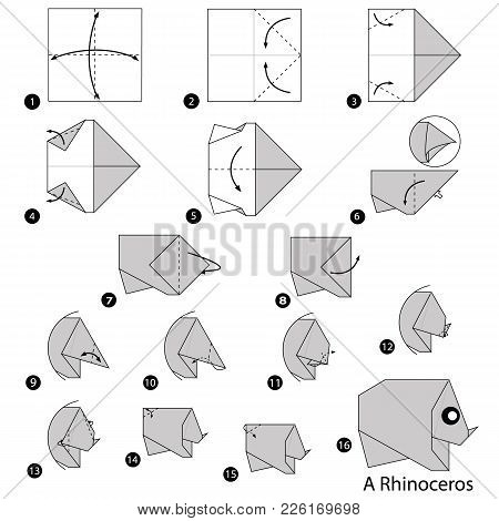 Step By Step Instructions How To Make Origami A Rhinoceros
