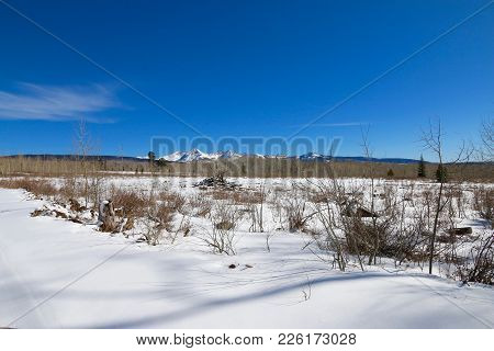 Winter In Manco State Park In Colorado