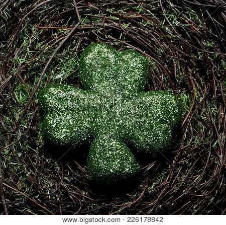 A Shiny Green Shamrock On A Green Mossy Background