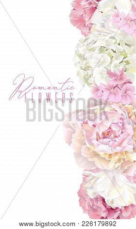 Vector Botanical Border With Pink Peony, White Hydrangea And Tulip Flowers. Romantic Design For Natu