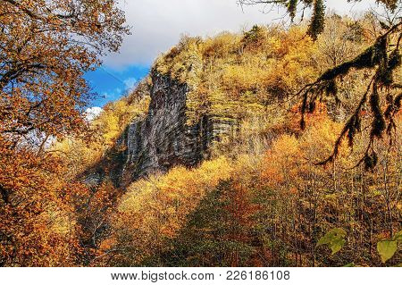 In The Vicinity Of The Village Of Khosta And On The Slopes Of The Canyon You Can See The Following R