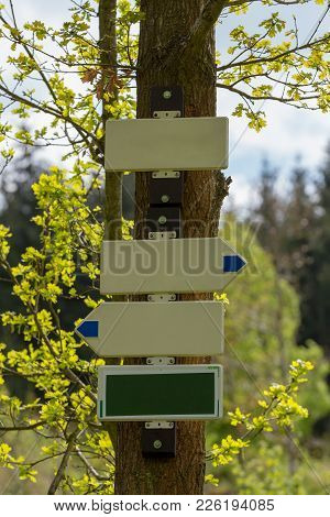 Empty Tourist Signpost Or Guidepost In Forest