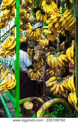 China Town, Yangon - Jan 21, 2017: Just Bananas. A Customer Is Choosing A Bunch Of Banana At A Store