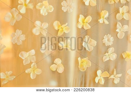 White Flower Petals Wedding Backdrop Background. Wedding Ceremony Special Occasion Event, Decoration