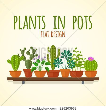 Flat Cactuses And Home Plantas Vector Concept. Plant Cactus In Pot, Nature Interior Flower Illustrat