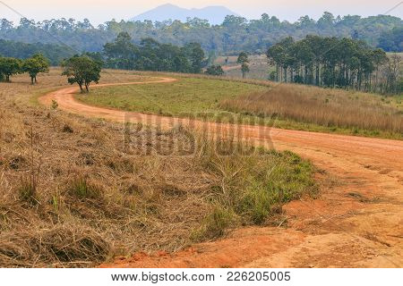 Rural S Curve Road In Tung Salang Luang National Forest Park, Thailand