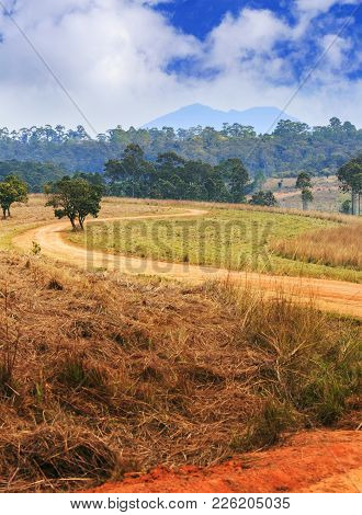 Rural S Curve Road And Trees In Tung Salang Luang National Forest Park, Thailand