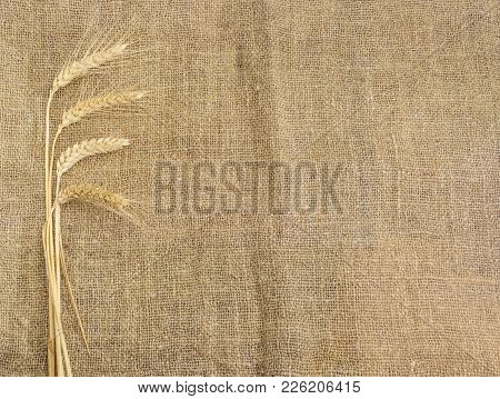 Background Of The Burlap Made Of Natural Coarse Unpainted Spinning Fibers From Hemp And Bundle Of Wh