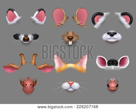 Cute Animal Ears And Nose Video Effect Filters. Funny Animals Faces Masks For Mobile Phone Vector Se