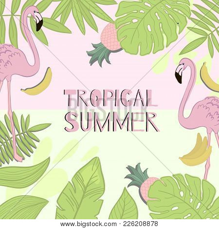 Frame Vector Tropical Summer. Green Leaves, Flamingo, Banana, Pineapple.