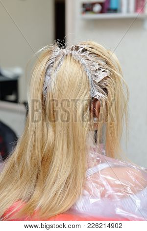 A Blond Girl Was Smeared With Paint On Her Hair In A Beauty Salon