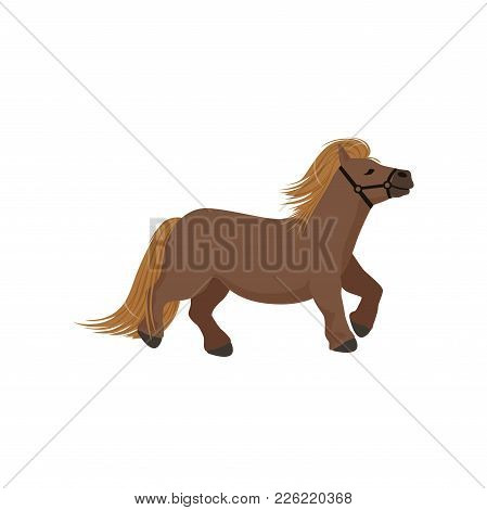 Cute Brown Pony, Thoroughbred Horse Vector Illustration Isolated On A White Background