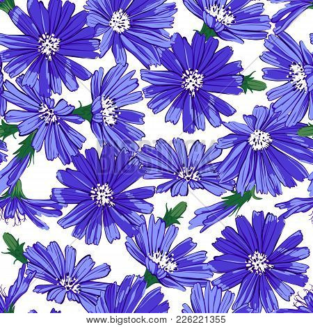 Floral Seamless Pattern With Chicory Isolated On White Background. Cute Blue Flowers. Summer Concept