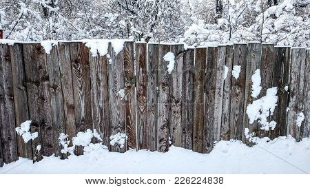 Fence Of Wood In The City In Winter. Board Covered With Snow Fence. Against The Backdrop Of Bushes A