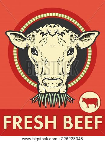 Label Bull  Cow Looks Vector & Photo (Free Trial) | Bigstock