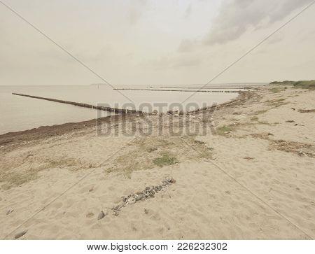 Mossy Breakwater Poles In Foamy Water Of Sea.  Sandy Beach Wit Algae, Stones And Shells.