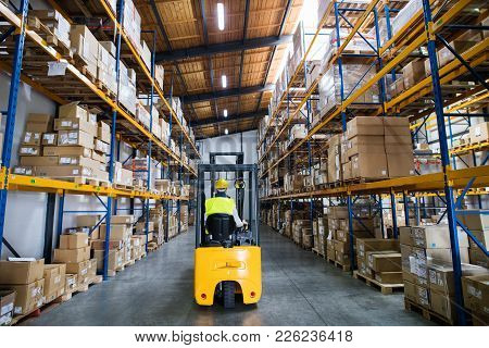 Man Forklift Driver Working In A Warehouse. Rear View.