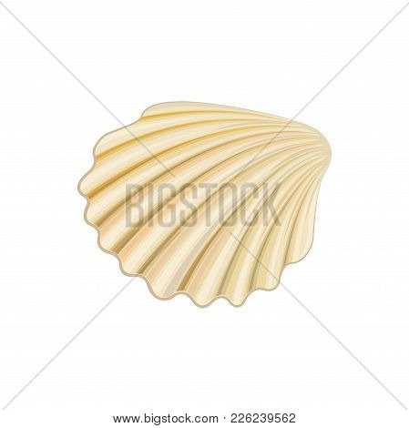 Icon Of Scallop. Healthy And Delicious Delicacy. Marine Product. Concept Of Seafood. Vector Illustra