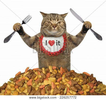 The Hungry Cat With A Knife And A Fork Is Near A Pile Of Dry Food. White Background.