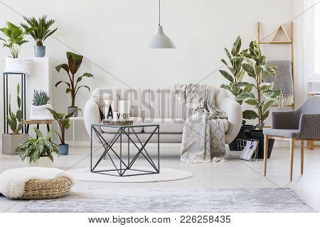 Plants In Botanic Living Room