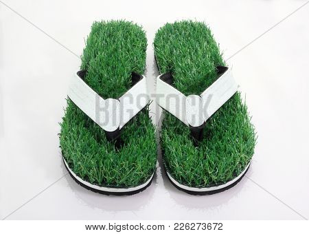 Flip-flop Slipper With Green Grass Comfort Concept