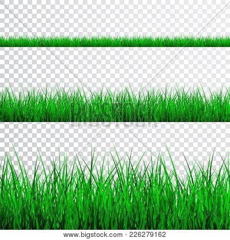 Green Grass Border Set On Transparent Background, Vector Illustration.