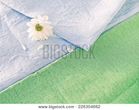 The Flower Of The White Chrysanthemum Is Covered With A Blue Linen Cloth. Several Petals Are Scatter