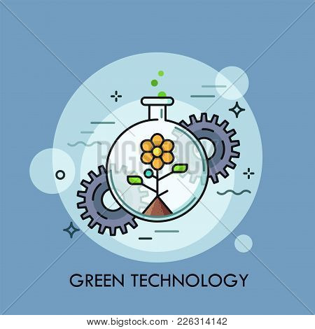 Blooming Flower Growing Inside Round-bottom Flask And Gear Wheels. Concept Of Eco Friendly Technolog